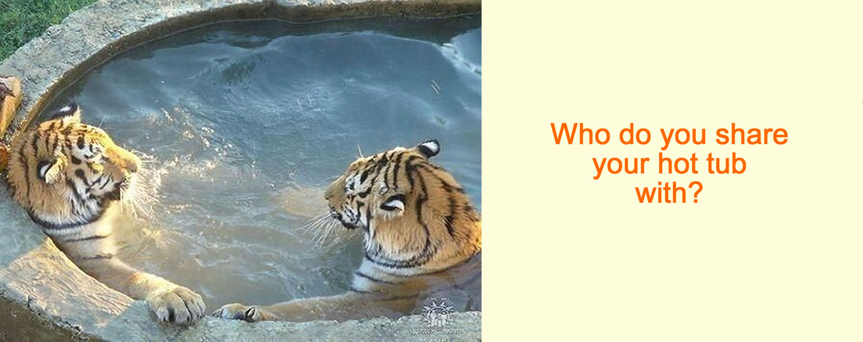 Who do you share your hot tub with?